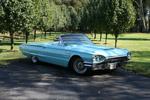 Katrina Fleener's 1965 Thunderbird Convertible